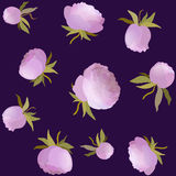 Vector peony floral seamless pattern. Pink cute flower illustration Royalty Free Stock Image