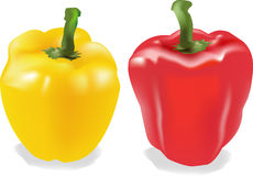Vector Peppers Royalty Free Stock Images