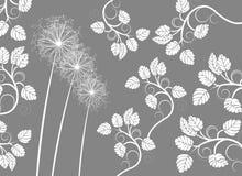 Vector petals Royalty Free Stock Image