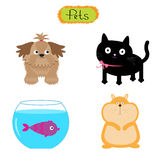 Vector pets illustration  Cute set White background Cat, dog, fish, hamster Flat design. Illustration Royalty Free Stock Photos