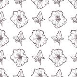 Vector petunya seamless pattern of flowers. Vector sketch art, hand drawn petunya seamless pattern of flowers and leaves isolated on white background Royalty Free Stock Images
