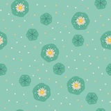 Vector peyote lophophora cactus seamless pattern. Vector floral peyote lophophora cactus green seamless pattern Vector Illustration