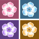 Vector Phlox gradient flowers Royalty Free Stock Photos