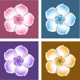 Vector Phlox gradient flowers Royalty Free Stock Photos