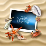 Vector photo frame lying on a background of sea sandy beach with seashells, pebbles, starfish and crab. Vector illustration of photo frame lying on a background Royalty Free Stock Images