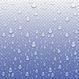 Vector Photo Realistic Image Of Raindrops Or Vapor Trough Window Glass Stock Photos