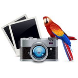 Vector Photography Concept Royalty Free Stock Photo
