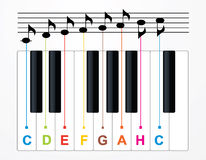 Vector piano keys and notes Stock Images
