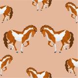 Vector picazo del caballo de la textura inconsútil Foto de archivo libre de regalías