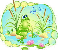Vector picture with a dreaming frog, butterflies and lotus Stock Photography