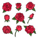 Vector pictures set of various roses. Love symbols. Flower. Collection of floral romantic illustration Royalty Free Stock Image