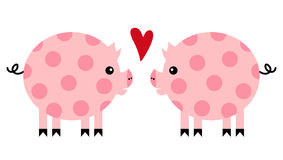 Vector pig Stock Image