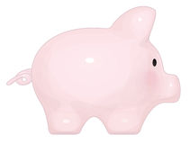 Vector pig  cartoon. Stock Photos