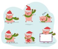 Cute pig collection isolated over white vector. Vector pig set isolated on a white background with red hat Santa Claus.New year symbol cartoon illustration.Farm vector illustration