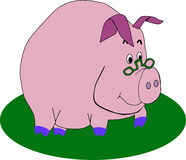 Vector pig wearing glasses Royalty Free Stock Photography