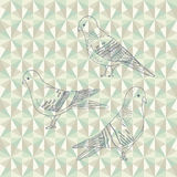 Vector pigeon birds Royalty Free Stock Photography