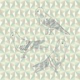 Vector pigeon birds. Set of three hand drawn pigeons. Vector cartoon birds Royalty Free Stock Photography