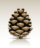 Vector pine cone isolated royalty free stock photography
