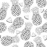 Vector pineapple background Stock Image