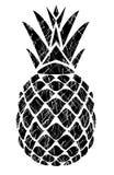 Vector pineapple isolated Stock Photo