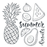 Vector pineapple and sliced fruits. Food illustration for print design, label and posters. Stock Photo