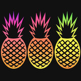Vector pineapple tropical fruit gradient outline set Royalty Free Stock Image
