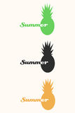 Vector pineapple tropical fruit logo set Royalty Free Stock Images