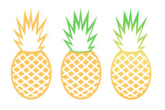 Vector pineapple tropical fruit outline set Stock Image