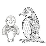 Vector pinguin set for adult coloring page. Hand drawn cute ping Royalty Free Stock Image
