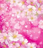 Vector pink background with hearts and flowers. Stock Images