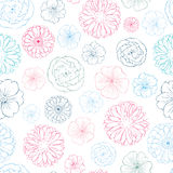 Vector Pink Blue Lineart Flowers Heads Seamless Stock Photography