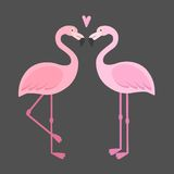 Vector pink flamingos illustration. stock illustration
