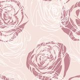 Vector pink  seamless floral pattern with roses Stock Photography