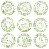 Vector pintado del icono de la fruta Imagen de archivo libre de regalías
