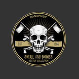 Vector Pirate Skull Label Stock Images