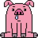 Vector pixel art pig. Isolated Stock Photo