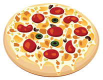 Vector pizza. With meat, olives and mushrooms Royalty Free Stock Image