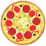Vector pizza Stock Photography
