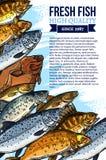 Vector Plakat für Markt der frischen Fische oder der Meeresfrüchte vektor abbildung