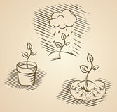 Vector plant concepts. Plant concepts in etching style royalty free illustration