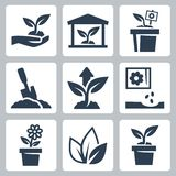 Vector plant growing icons Royalty Free Stock Photo
