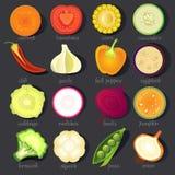 Vector plantaardige pictogramreeks Stock Afbeeldingen