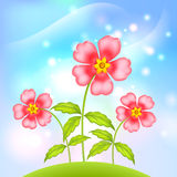 Vector plastic fantastic flowers. Pink little flowers growing at green summer hill vector illustration