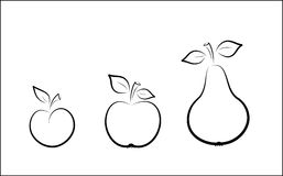 Vector plum, apple and pear Royalty Free Stock Photo