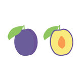 Vector plum fruit icon set. Isolated on white. A plum illustrations set with two different versions. One with a whole plum, other with a plum cut open Royalty Free Stock Images