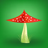 Vector Poisonous Mushroom. Fly Agaric. Vector Poisonous Mushroom on Soft Green Background. Fly Agaric Stock Photography