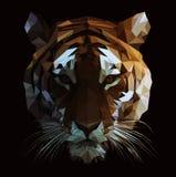 Vector polivinílico bajo Tiger Illustration stock de ilustración