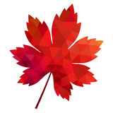 Vector polygonal red maple leaf on white background Royalty Free Stock Photo