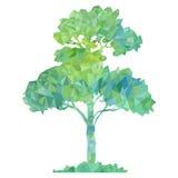 Vector polygonal silhouette of green tree Stock Photos
