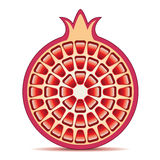 Vector pomegranate Royalty Free Stock Photography